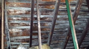 Water Damage Attic Restoration From Mold Growth Induced By Water Damage