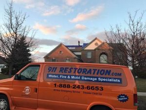 Mold Removal Columbia