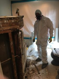 A Technician Conducting Renovations After A Mold Infestation Was Discovered