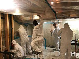 Technicians Eradicating Mold From A Basement